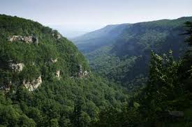 Cloudland Canyon 01